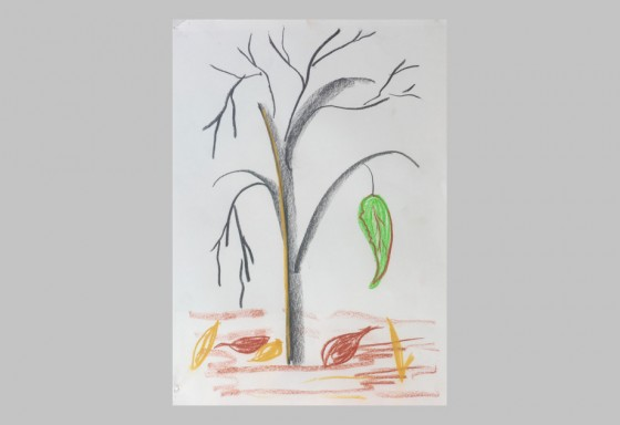 tree-4s